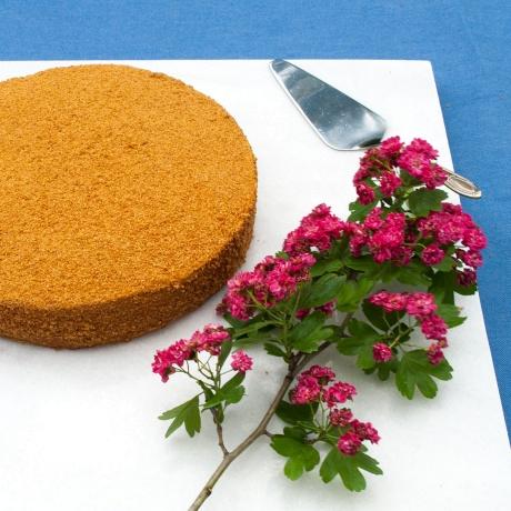 Tort Medovik [1 buc.]